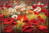 Meadow Poppies II Mounted Print by Lucas Santini