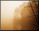 Fog on Shelly Lake I Kunst op hout van Alan Hausenflock