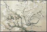 Amandeltakken in bloei, Saint-Remy, ca. 1890 Kunst op hout van Vincent van Gogh