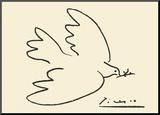 Tauben Picasso Poster  bei AllPostersch