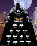 Batman- Logos Print