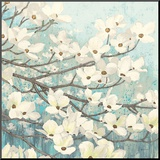 Dogwood Blossoms II Mounted Print by James Wiens