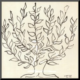 Le Platane Mounted Print by Henri Matisse