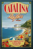 Catalina by Air Mounted Print by Kerne Erickson