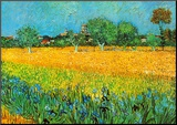 View of Arles with Irises Mounted Print by Vincent van Gogh