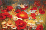 Meadow Poppies I Mounted Print by Lucas Santini