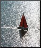Attitude: Sailing Mounted Print