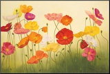 Sunlit Poppies Mounted Print by Janelle Kroner