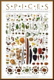 Spices and Culinary Herbs Mounted Print