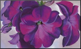 Petunias, c.1925 Mounted Print by Georgia O'Keeffe