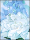 White Rose W/ Lakspur No.2 Mounted Print by Georgia O'Keeffe