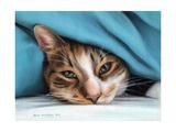Cat under Blacket Stampe di Sarah Stribbling