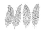 Feathers Prints by Neeti Goswami
