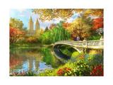 Bow Bridge Prints by Dominic Davison