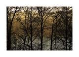 Three Imagenings Limitierte Auflage von Britt Charles