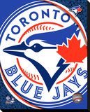 Toronto Blue Jays Logo Stretched Canvas Print