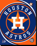 Houston Astros Logo Stretched Canvas Print