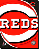Cincinnati Reds Logo Stretched Canvas Print