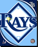 Tampa Bay Rays Logo Stretched Canvas Print