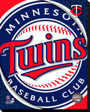 Minnesota Twins Logo Stretched Canvas Print