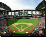 Chase Field Stretched Canvas Print