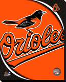 Baltimore Orioles Logo Stretched Canvas Print