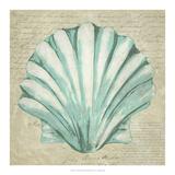 Seafoam Shell II Art by Chariklia Zarris