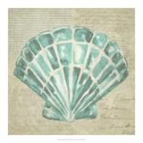 Seafoam Shell III Posters by Chariklia Zarris