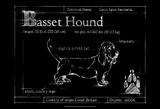 Blueprint Bassett Hound Prints by Ethan Harper