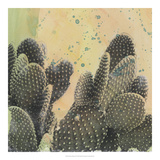 Desert Dreams II Giclée-Druck von Naomi McCavitt