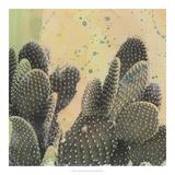 Sueños del desierto II Lámina giclée por Naomi McCavitt