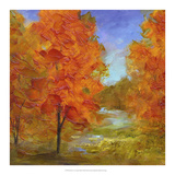 Burst of Autumn Color Print by Sheila Finch