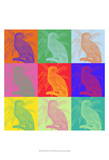 Parrot Party I Prints by Jarman Fagalde