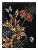 Dark Floral II Giclee Print by Naomi McCavitt