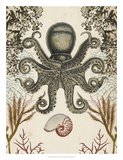 Antiquarian Menagerie - Octopus Giclee Print by Naomi McCavitt