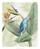 Avian Paradise III Posters by Grace Popp