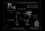 Blueprint Pug Print by Ethan Harper