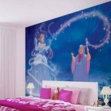 Disney Cinderella - Transformation Wallpaper Mural
