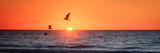 Masonboro Inlet Sunrise I Posters by Alan Hausenflock