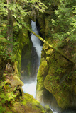 North Cascades NP III Photographic Print by George Johnson