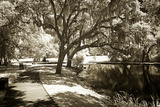 Walker's Pond I Photographic Print by Alan Hausenflock