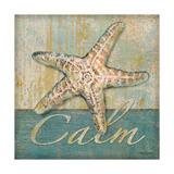 Calm Posters by Todd Williams