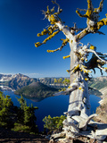 Crater Lake I Photographic Print by Ike Leahy
