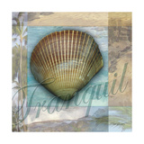 Tranquil Shell Poster by Todd Williams