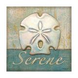 Serene Art by Todd Williams