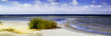 Cedar Island Beach I Prints by Alan Hausenflock