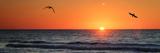 Masonboro Inlet Sunrise II Posters by Alan Hausenflock