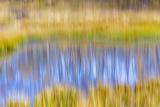 Fall Pond I Photographic Print by Kathy Mahan