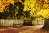 Autumn Stillness I Photographic Print by Alan Hausenflock