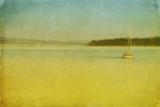 Sailing Photographic Print by Roberta Murray